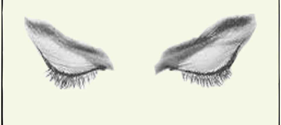 Lo que tus ojos no pueden ver