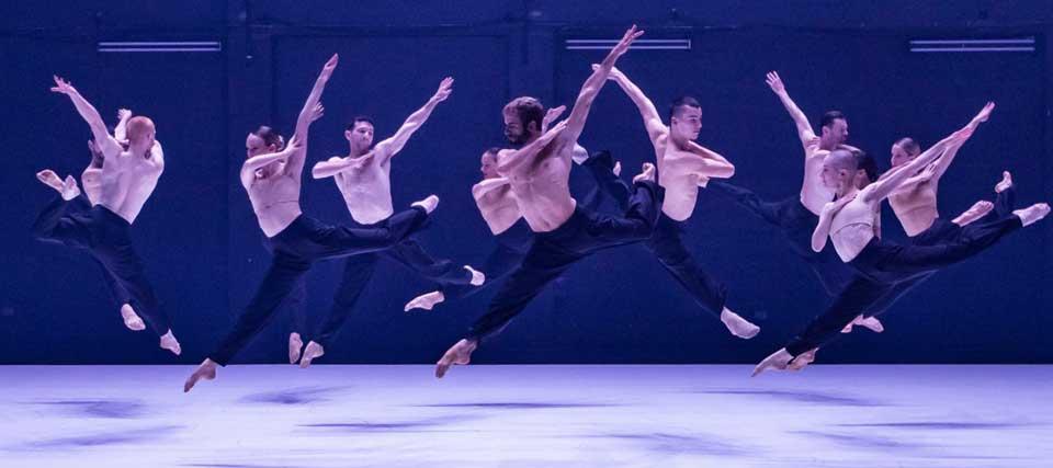 SYDNEY DANCE COMPANY: ab [intra]