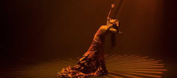 -30% en tus entradas para 'Amores flamencos' en el Teatro EDP Gran Vía